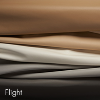 Flight_195x195.jpg