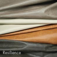 Resilience_195x195.jpg