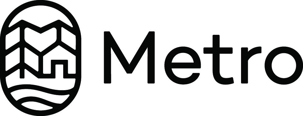 metro copy.jpg