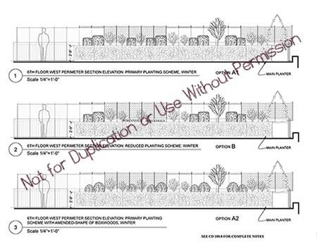 StA_LLC-Urban_Winter Planting-NFDflat.jpg
