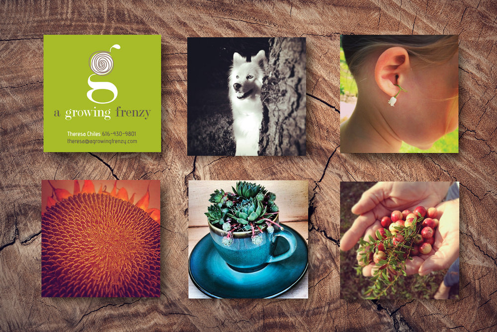 A Growing Frenzy BrandCoup Moo Business Cards