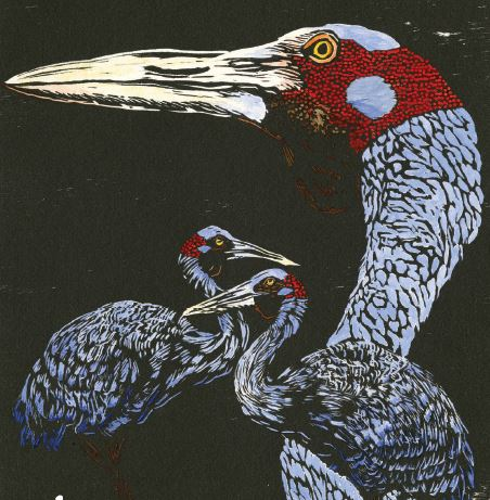 Heather Kepski,  Brolgas , 2014, hand painted woodcut (detail).