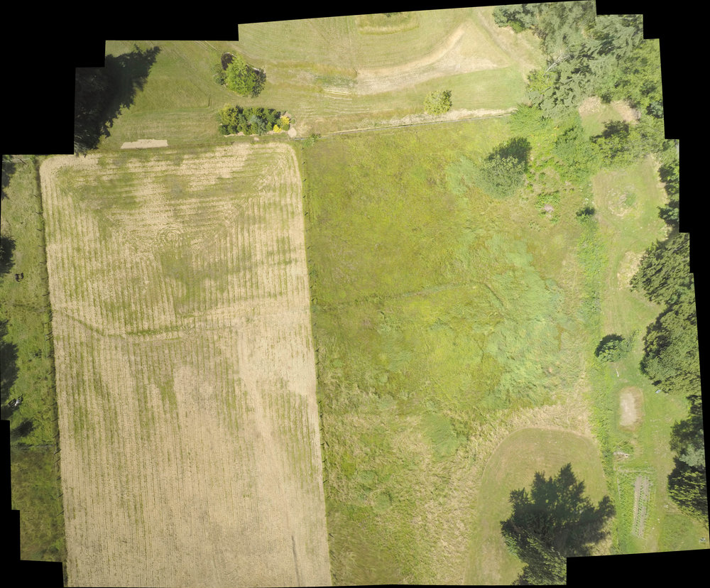 Aerial Imaging of a pasture in Redmond, WA