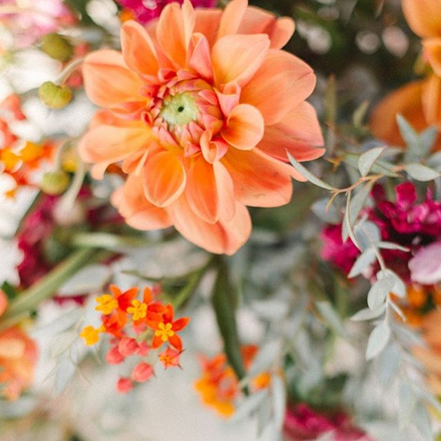 November 1st! You know what that means? It officially holiday season🦃🍂✨ We are now taking orders for all your holiday floral needs! Parties, events, family gathering, you name it we got you covered 😊 #holidays #holidayseason #holidayflorals #thanksgiving #friendsgiving #dinnerparties #ocflorist #ocfloraldesigner #florist #events #weddings #weddingflorist