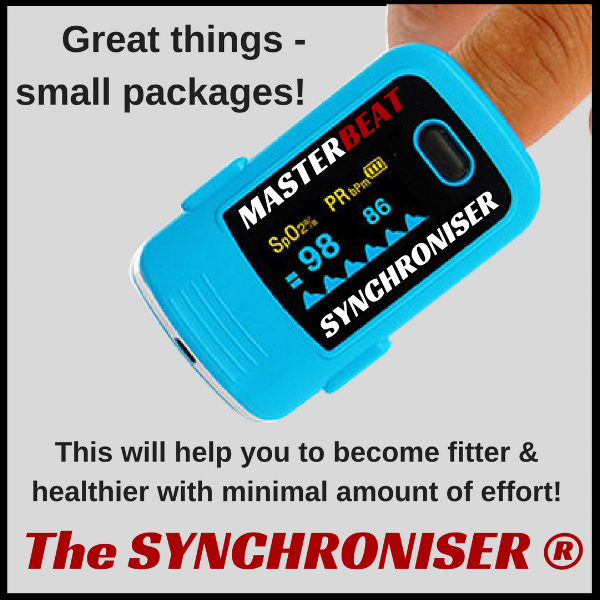 The Synchroniser Great things small packages 2.png