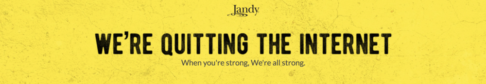 Jandy Quitting The Internet Pool Chasers Podcast