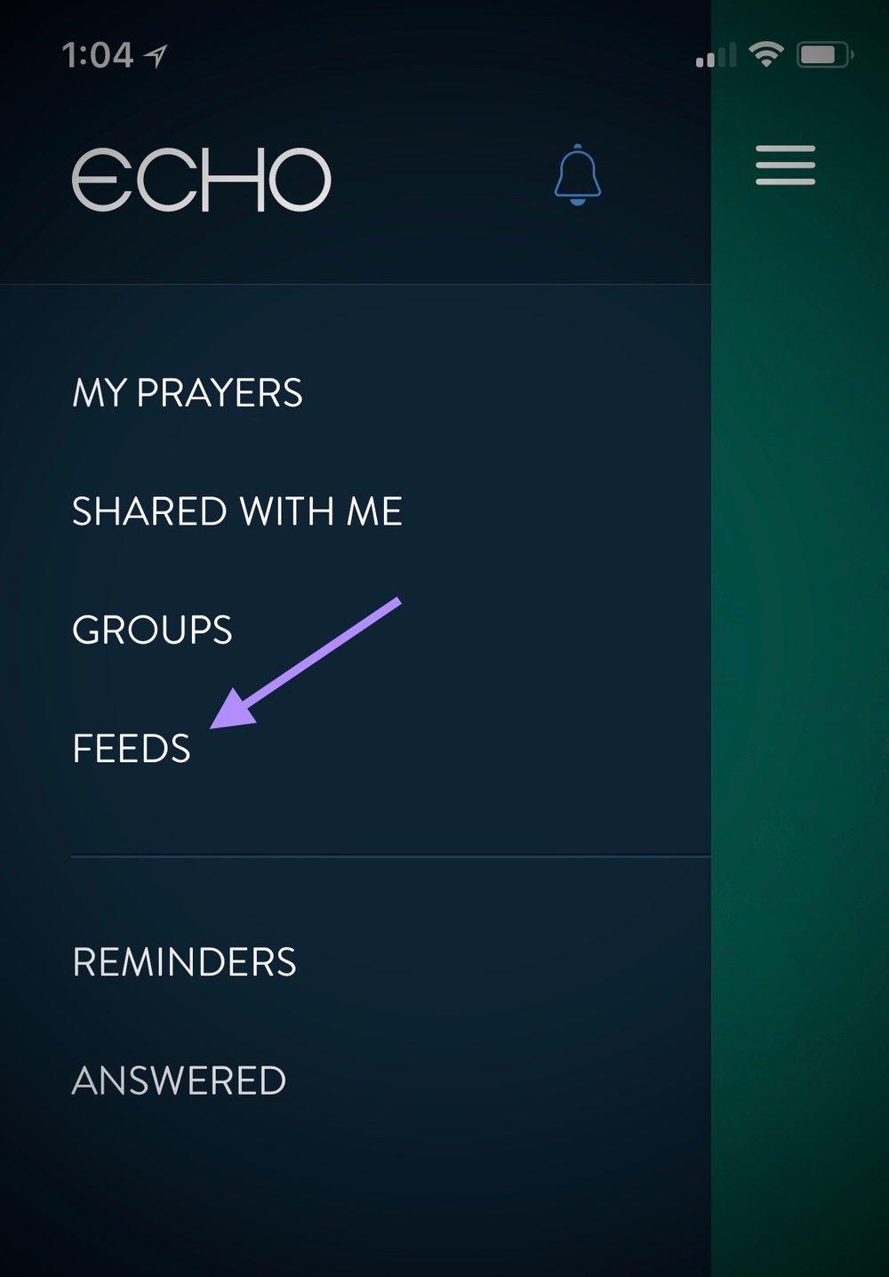select feeds.jpg