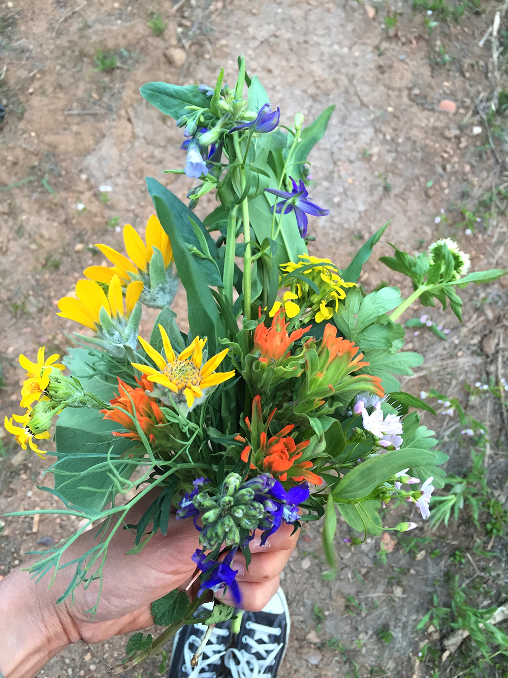mountain_bouquet.jpg