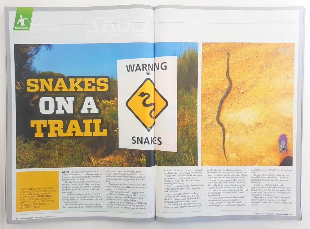 snakes_1.jpg