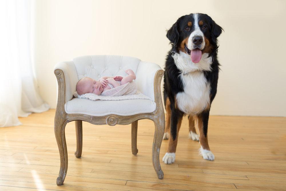 San Diego Newborn Photography Babies and Puppies.jpg
