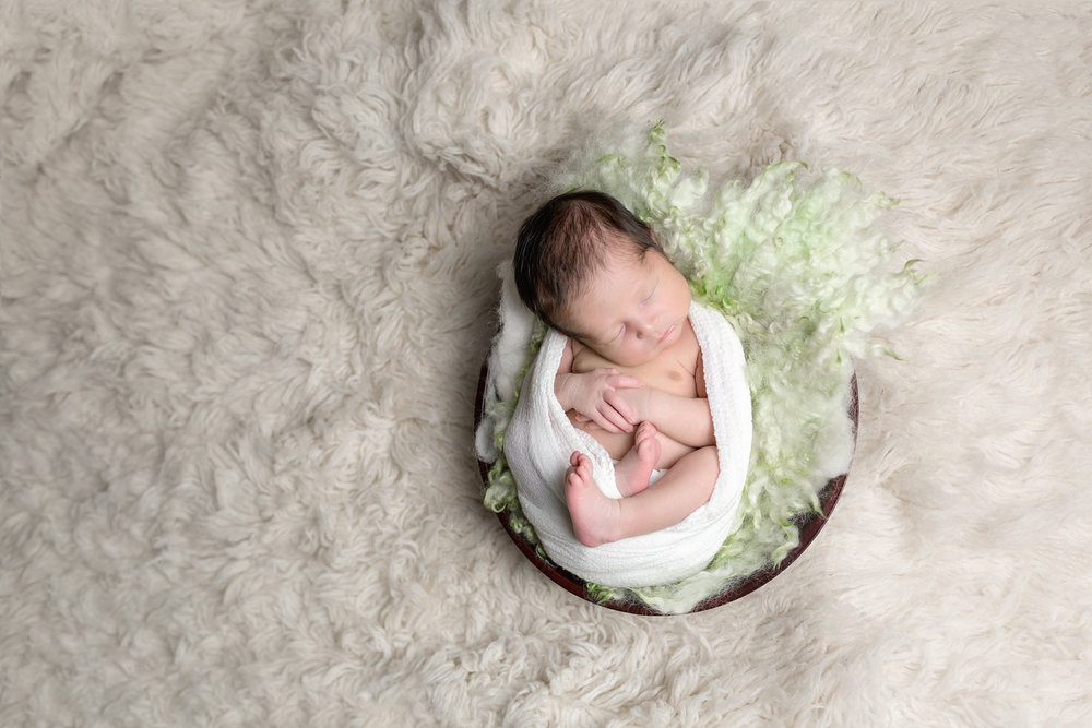Overview shot of Leo Newborn Photography Session by San Diego Newborn Photographer