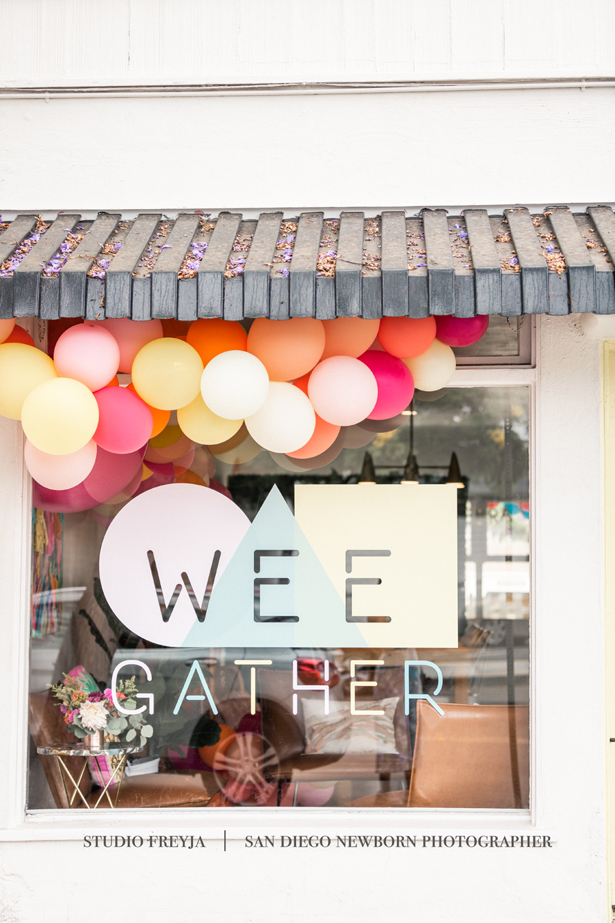 Wee Gather San Diego Party Event Space by San Diego Portrait Photographer Studio Freyja 24.jpg