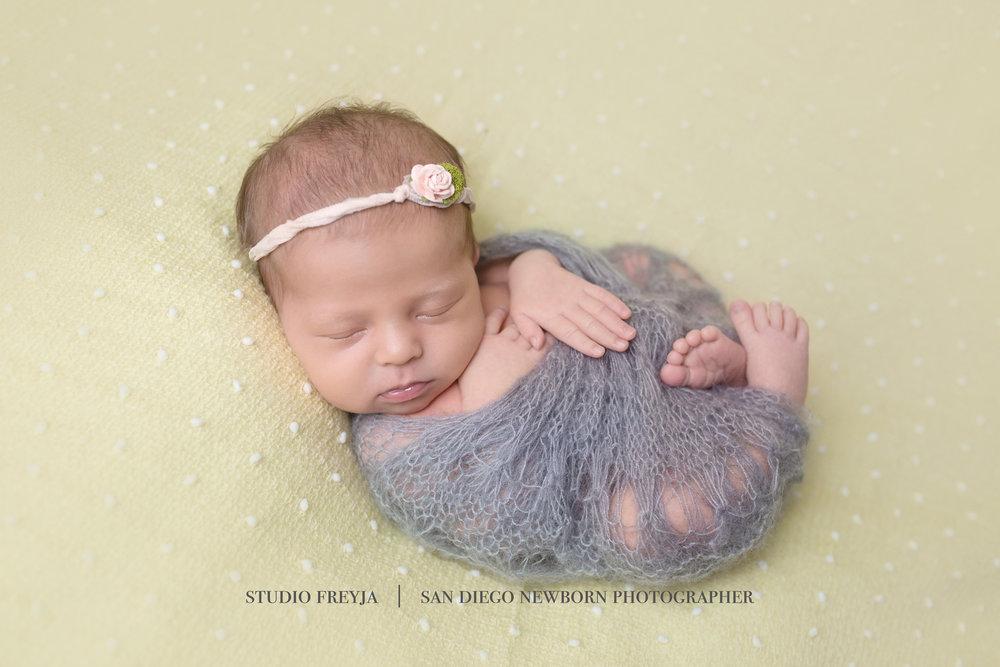 Hana Newborn Session Copyright Studio Freyja  San Diego Newborn Photographer (1 of 4).jpg