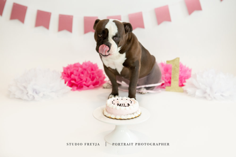 Mila One Year Cake Smash Copyright Studio Freyja (51 of 72).jpg