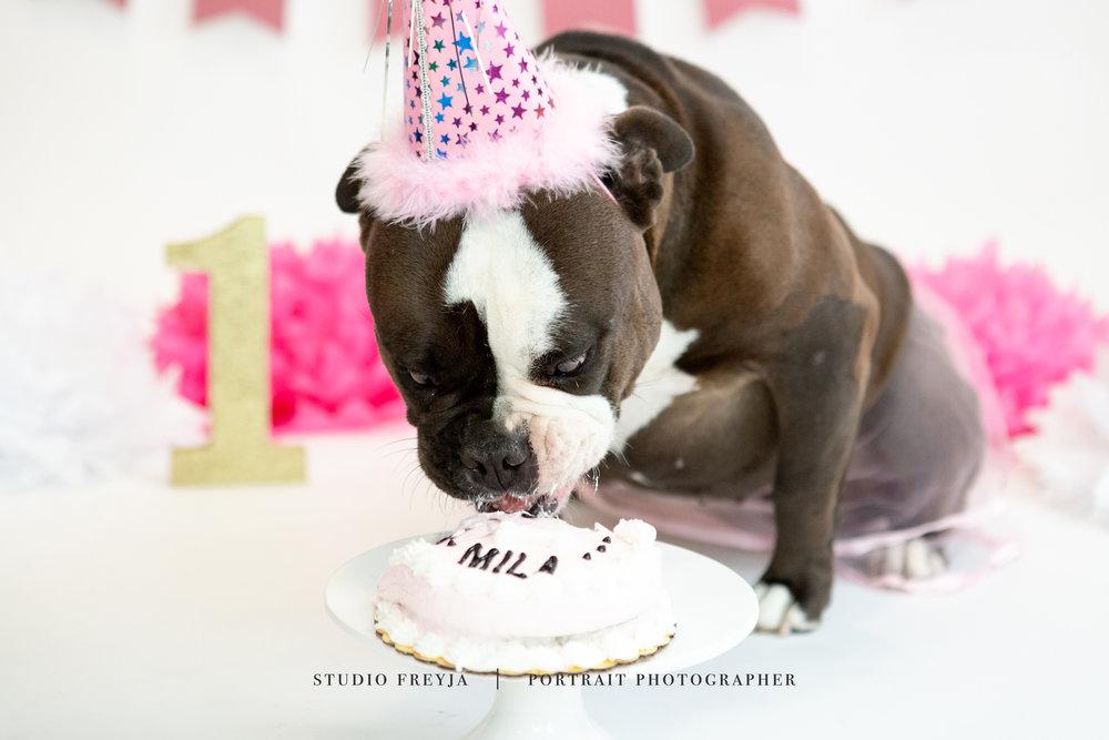 Mila One Year Cake Smash Copyright Studio Freyja (53 of 72).jpg
