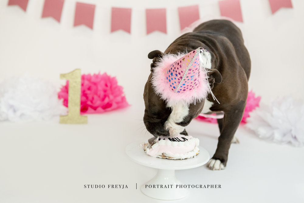 Mila One Year Cake Smash Copyright Studio Freyja (57 of 72).jpg