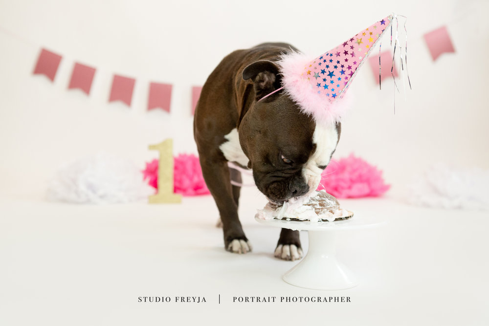 Mila One Year Cake Smash Copyright Studio Freyja (71 of 72).jpg