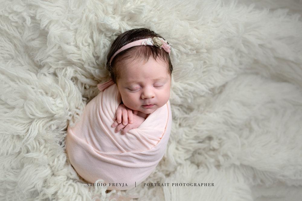 Blush Newborn Baby Girl San Diego Newborn Pictures