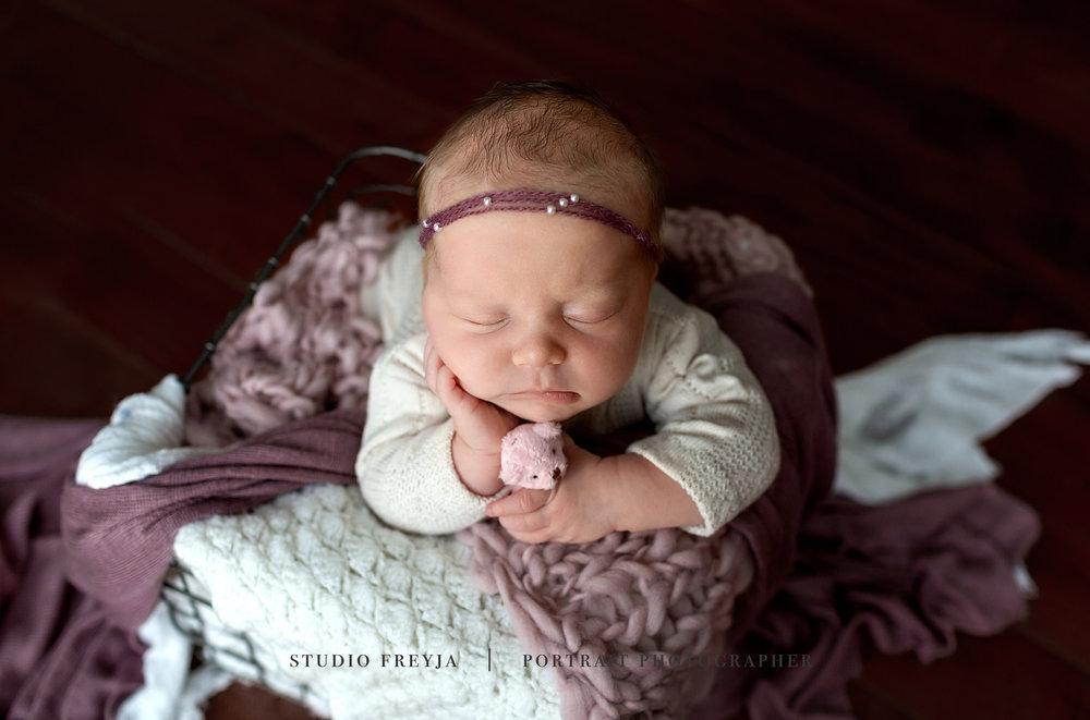 Vivan Newborn Session Copyright Studio Freyja-15_1.jpg