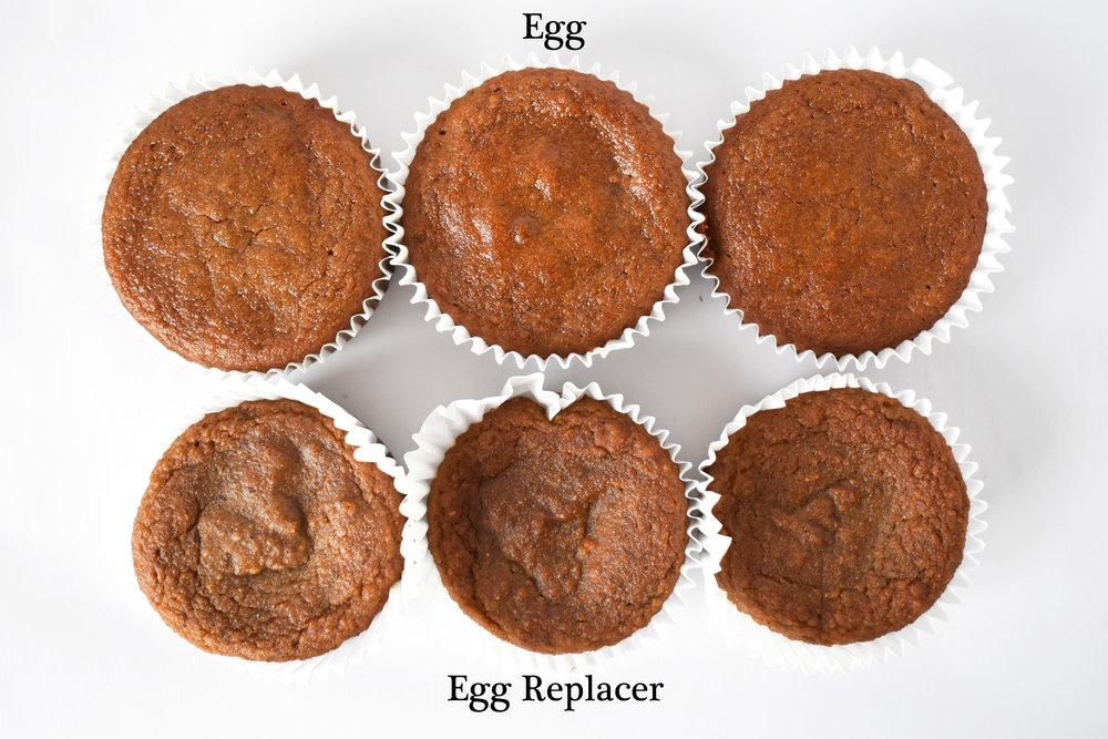 Egg vs. Egg Replacer / CarolynWilliamsRD.com