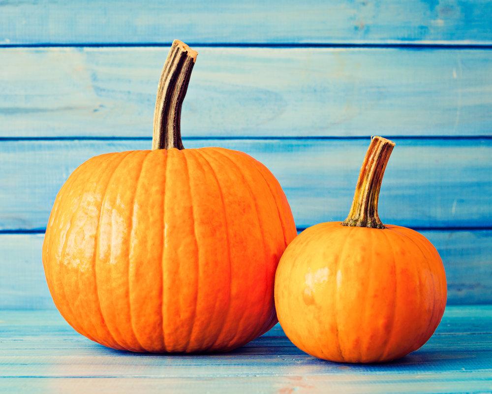 Pumpkin Nutrition Carolyn Williams, PhD, RD