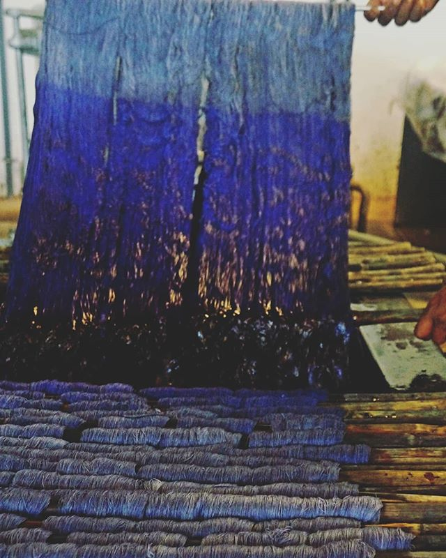 The deep saturation of hand dyed yarn is the reason for our fabric being so rich in color. . . . . . #dye #fabric #yarndyed #interiordesign #textiles #decor #upholstery