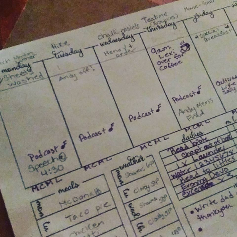 A snipped of what my weekly planning page looks like.