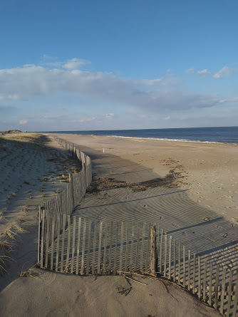 Cape Henlopen State Park in the winter, my happy little piece of heaven by the sea.