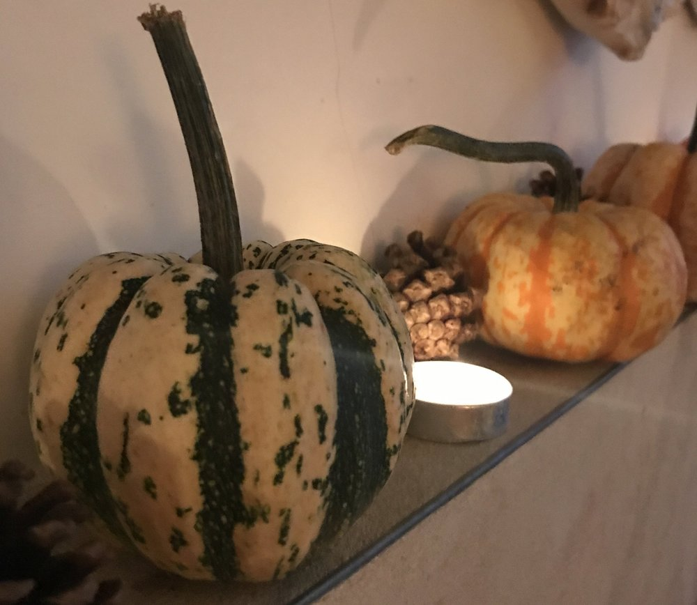 Celebrating the beauty of the gourd!