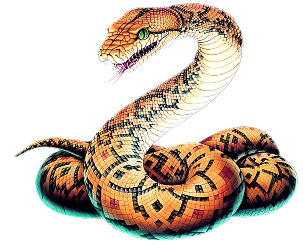 snakee.png