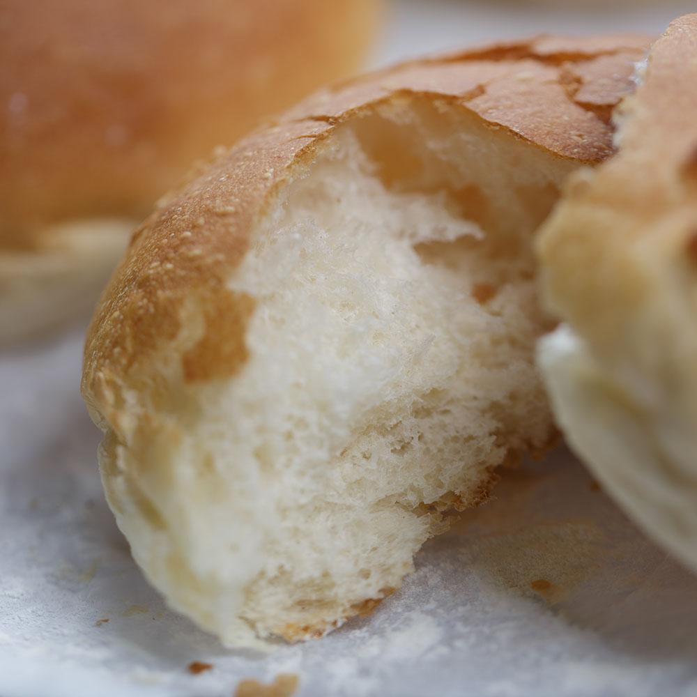 brood-3.jpg