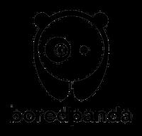 boredpanda