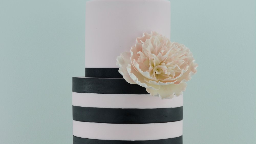 Blush Peony - Contrasting striped celebration cake with a delicate fluffy open peony in blush pink