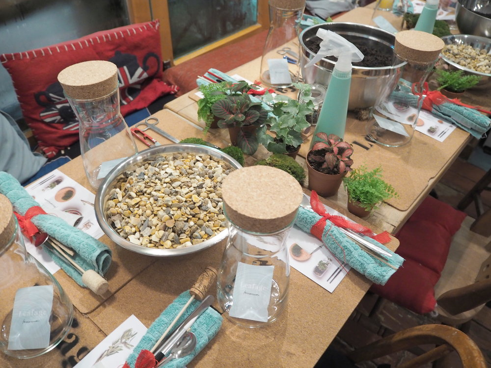 Leafage Terrarium Workshop - Ingredients 3