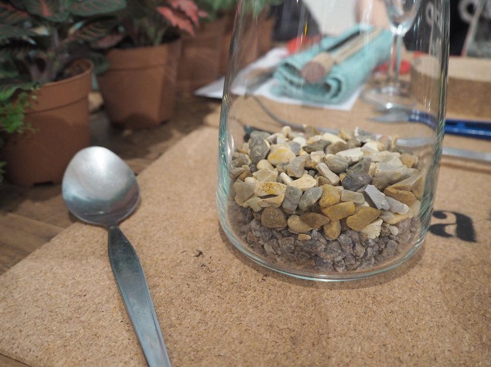 Leafage Terrarium Workshop - Stones