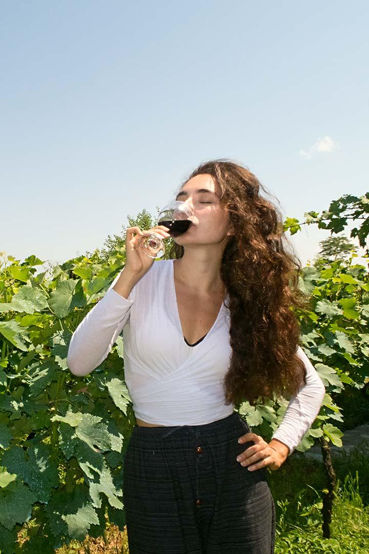 Дегустация вина - Попробуйте лучшее кахетинское вино!