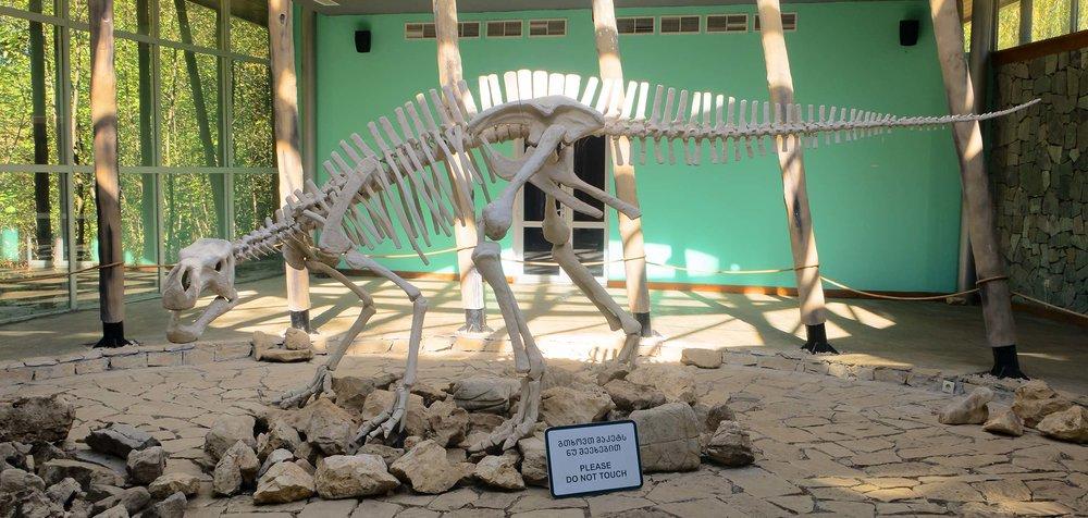 Скелет-Сатаплия-Динозавры-Археология-Парк-Грузия-Достопримечательности-NAMERANI.jpg