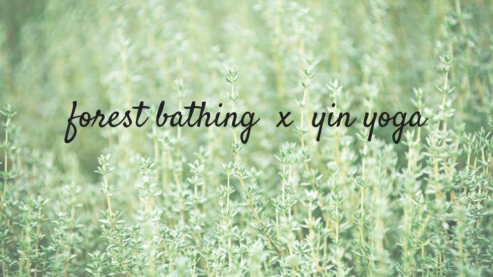 forest bathing x yin yoga.jpg