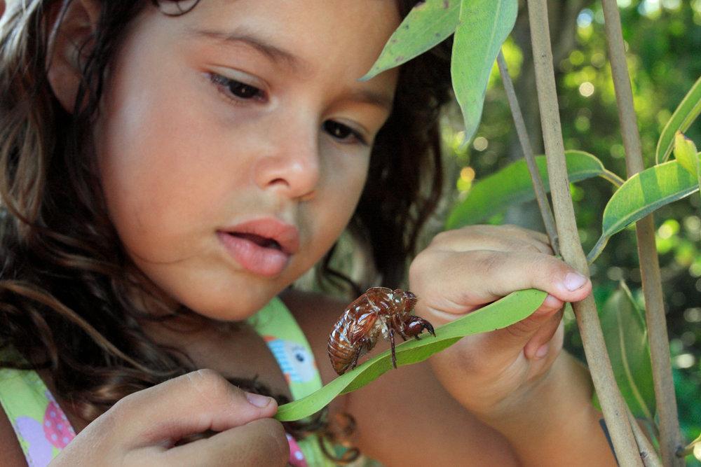 Girl & Beetle.jpg