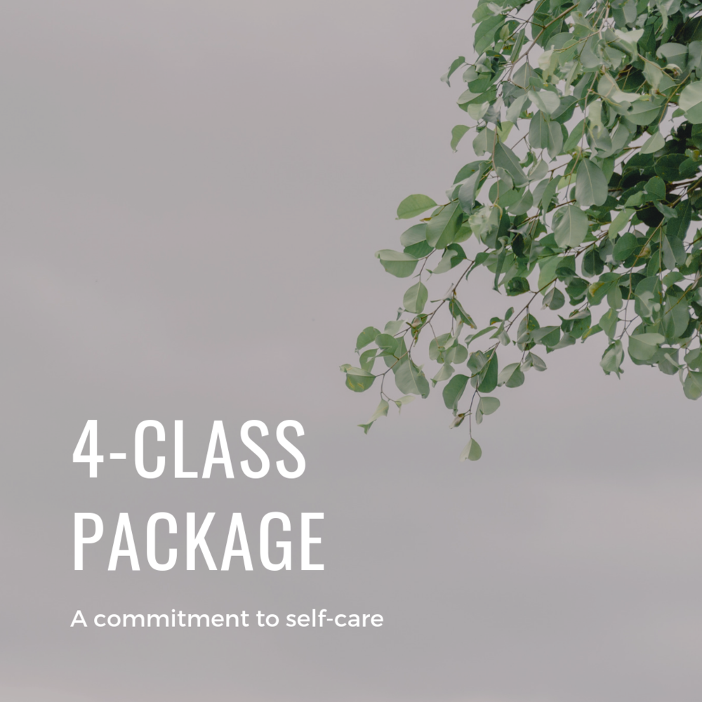 4-class package for forest bathing, forest therapy