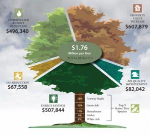 tree-chart_i-tree