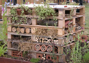 bug hotel wildlife