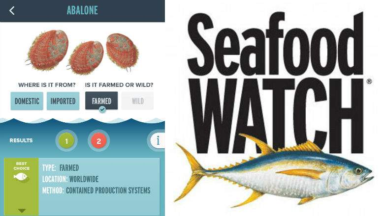 seafood-watch.jpg