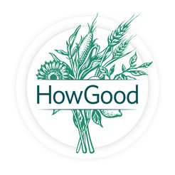 how-good-logo.jpg