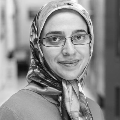 Samaneh Moeini - University of Sussex