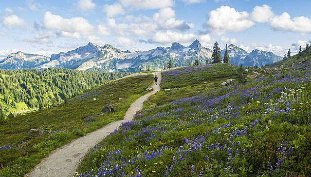 Owyhigh Lakes Trail, Mount Rainier