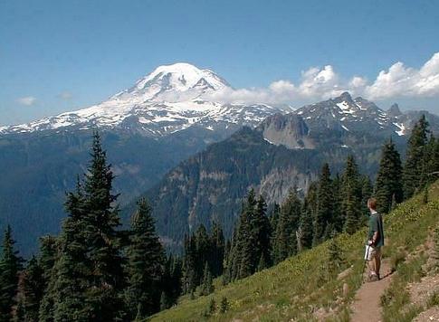 Shriner trail, mount rainier national park