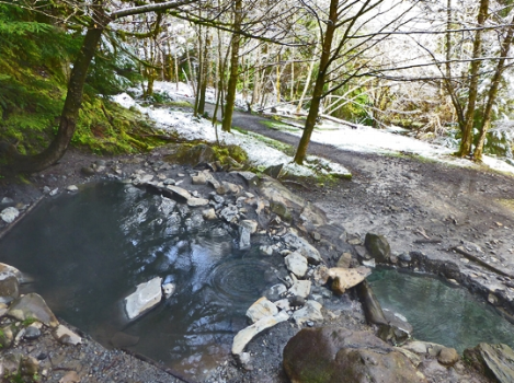 Olympic Hot Springs - Boulder Creek Trail Olympic National Park