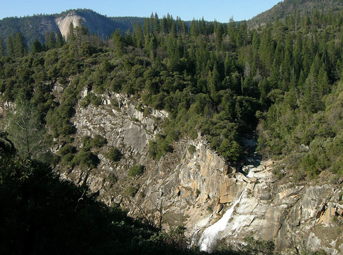 PLUMAS NATIONAL FOREST