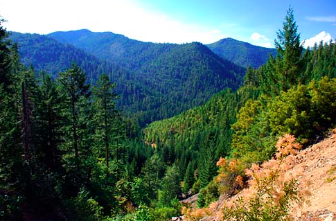Siskiyou Mountains, Oregon
